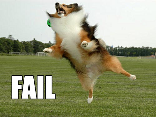 cachorrofail7