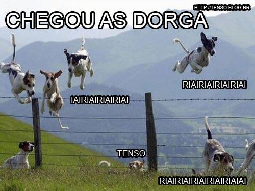 dorgado51