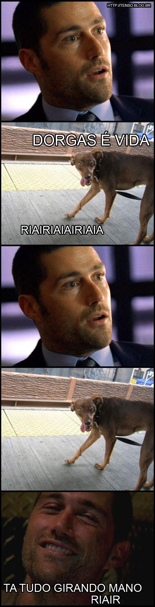 dorgasvida1