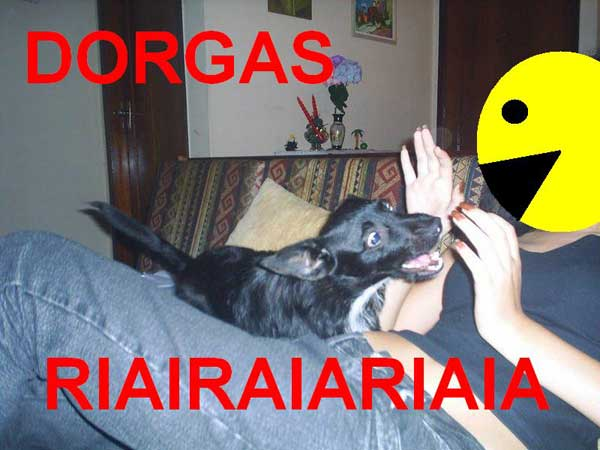 dorga_2
