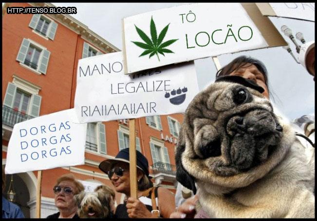 legalize2