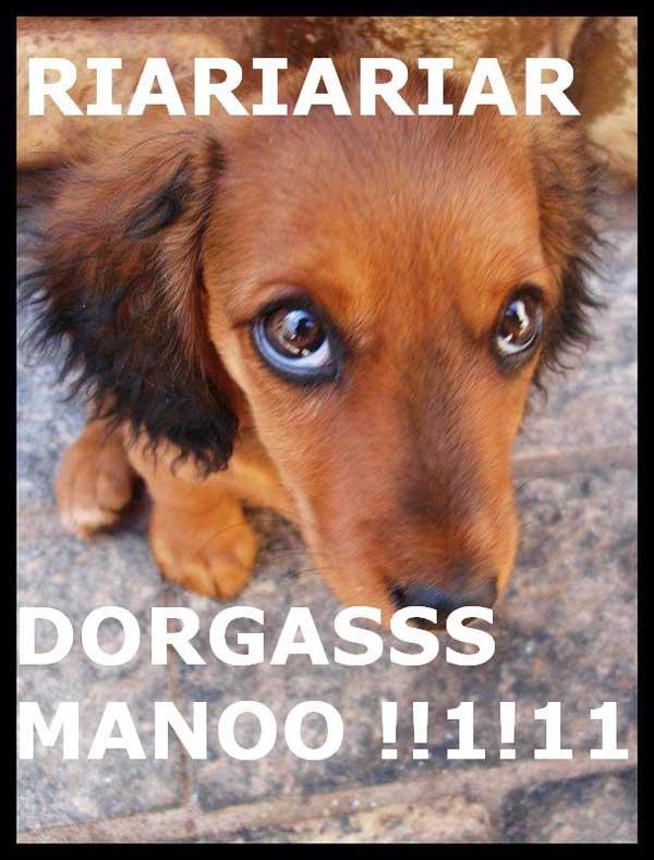 dorgas_binho
