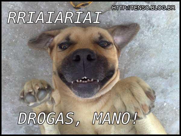 dorgas_jonatan