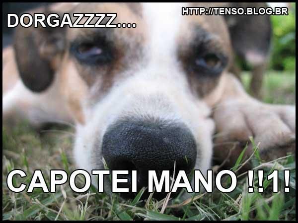 dorgas_fabio