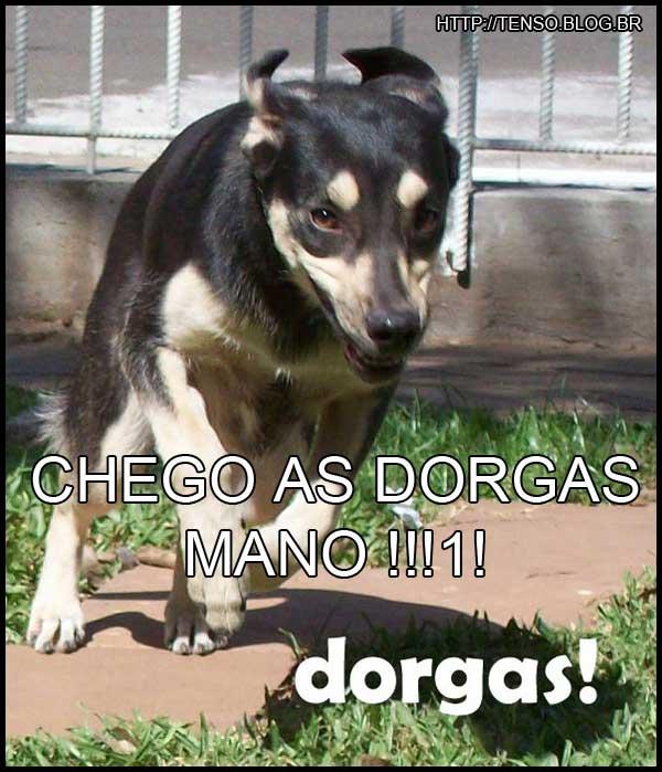 dorgas_mineia