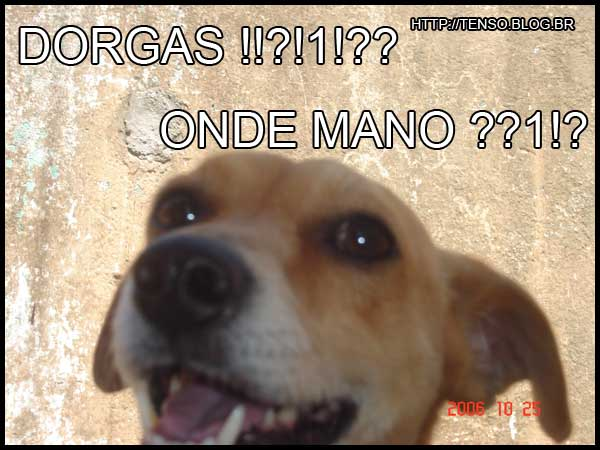 dorgas_thomas