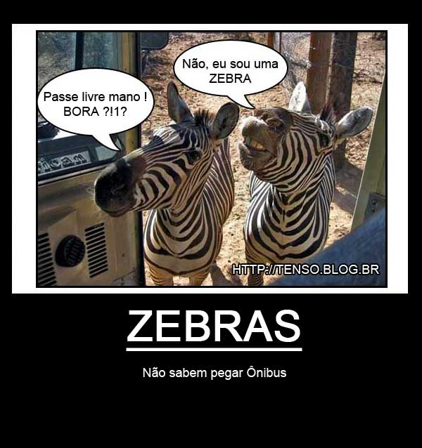 motivacional_zebra