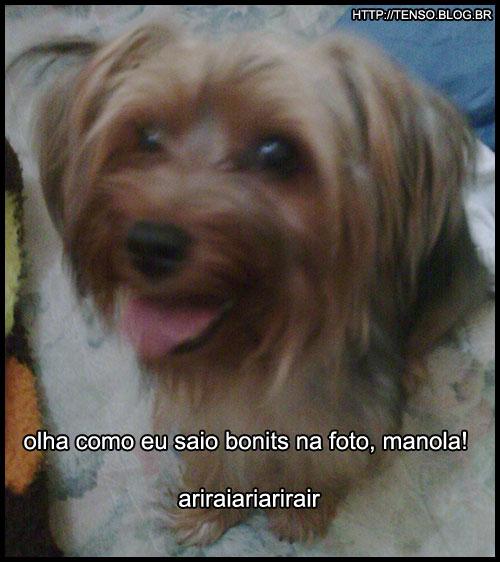 dorgas_carool