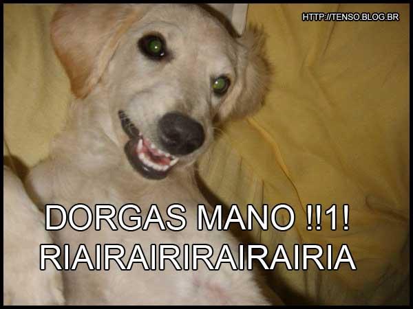 dorgas_marcella