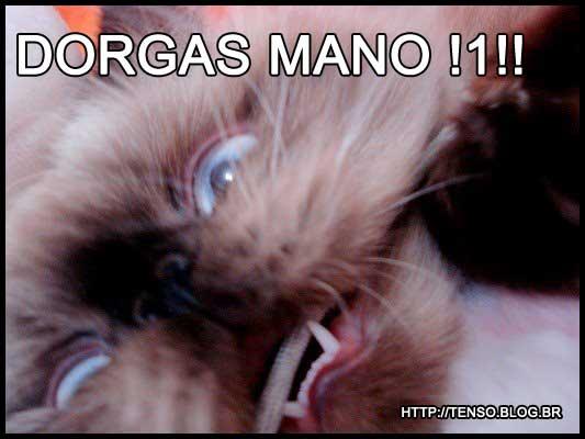 dorgas_mariana