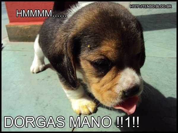 dorgas_matheus