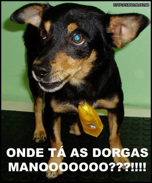 dorgas_rafael