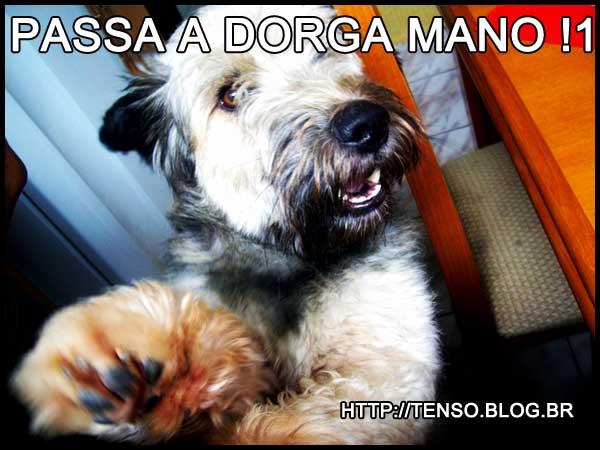 dorgas_samantha