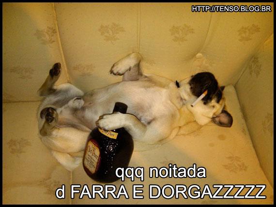 dorgas_andre-seginhodono-do-pug