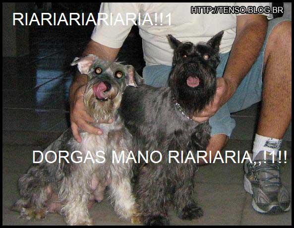dorgas_andrei
