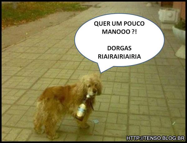dorgas_fernando