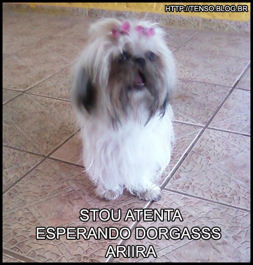 dorgas_marianne