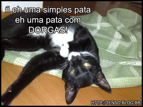 dorgas_fadua