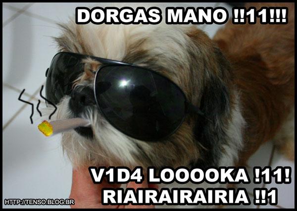 dorgas_joao