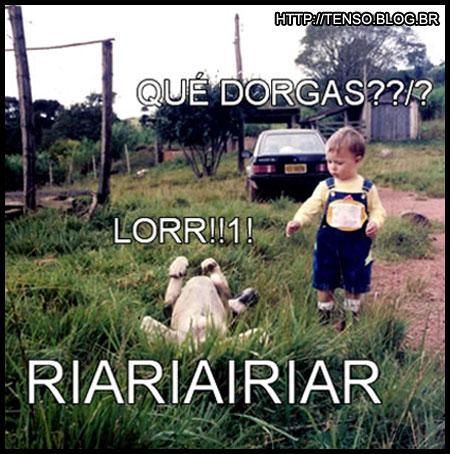 dorgas_lucas