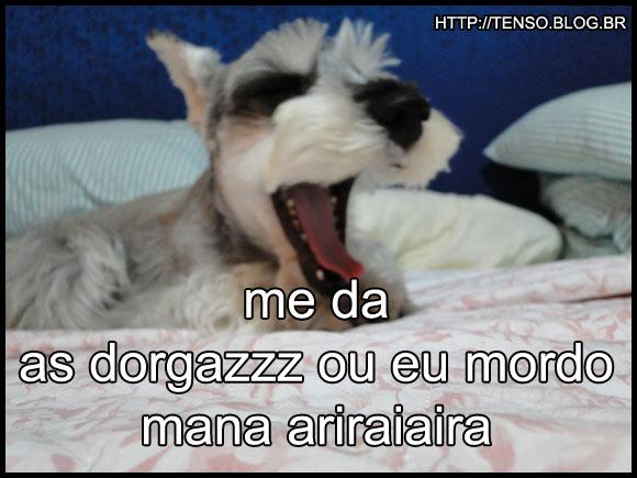 dorgas_maria