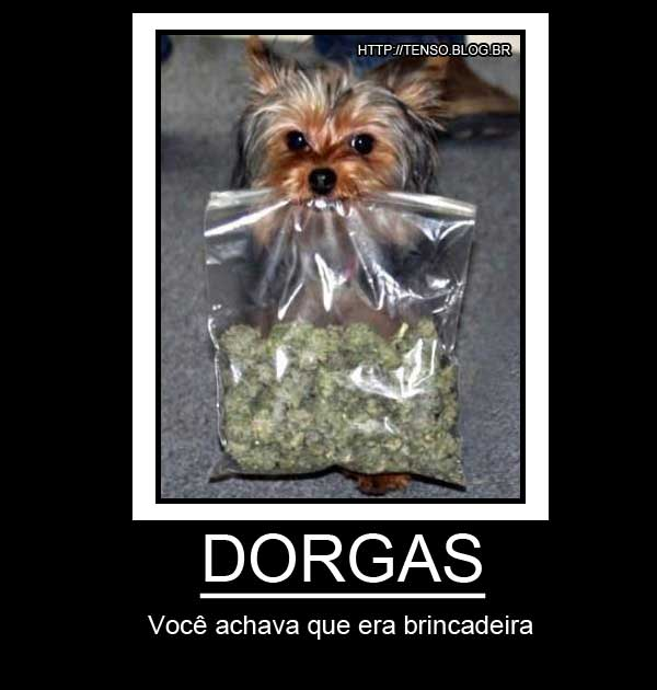 dorgas_motivacional