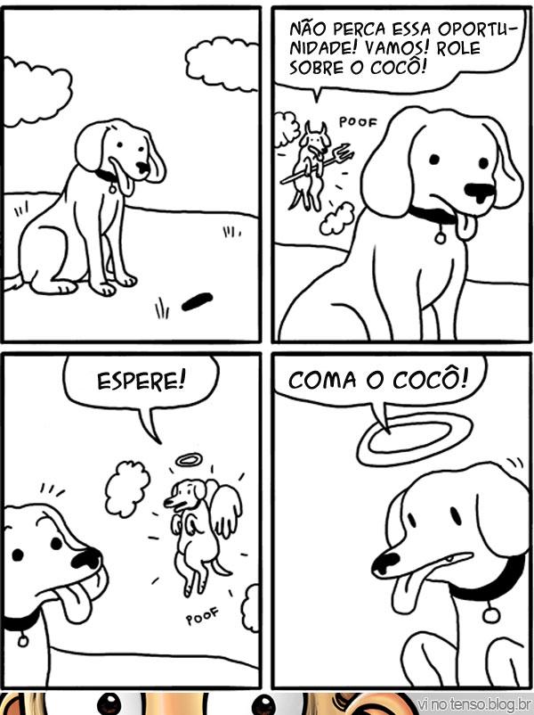 dilema-canino