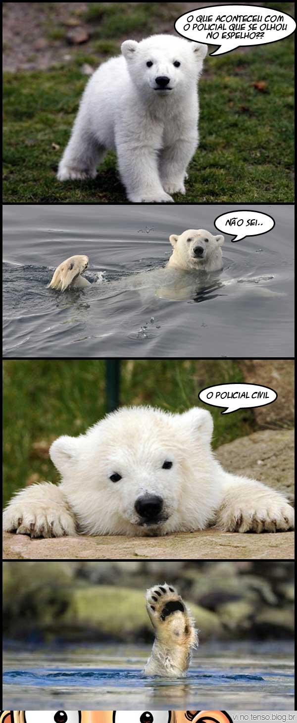 ursosemgraca