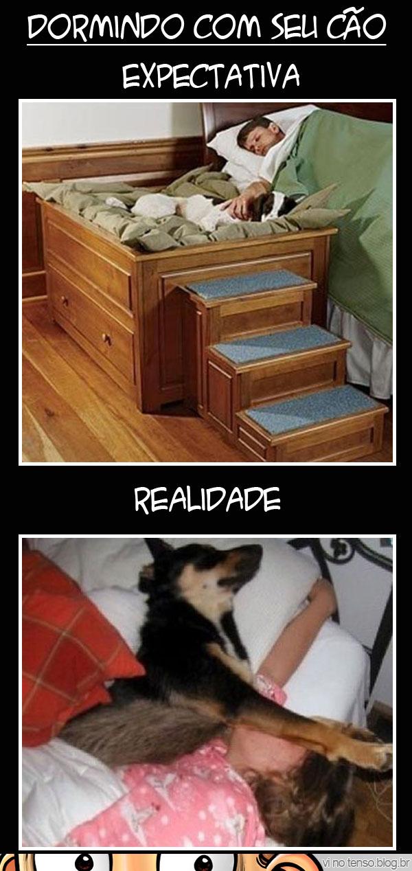 dormir_com_cachorro