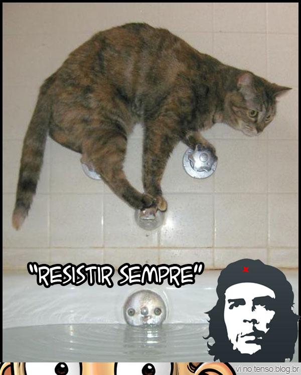 resistir_che_guevara
