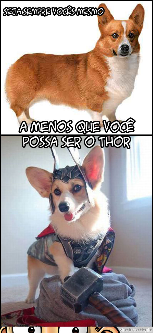 seja-thor