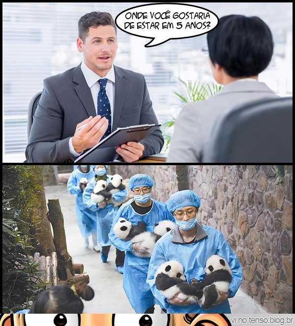 dica-entrevista